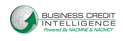 Business_Credit_Intelligence